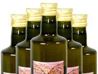 Bio Olivenöl - Abholung vor Ort